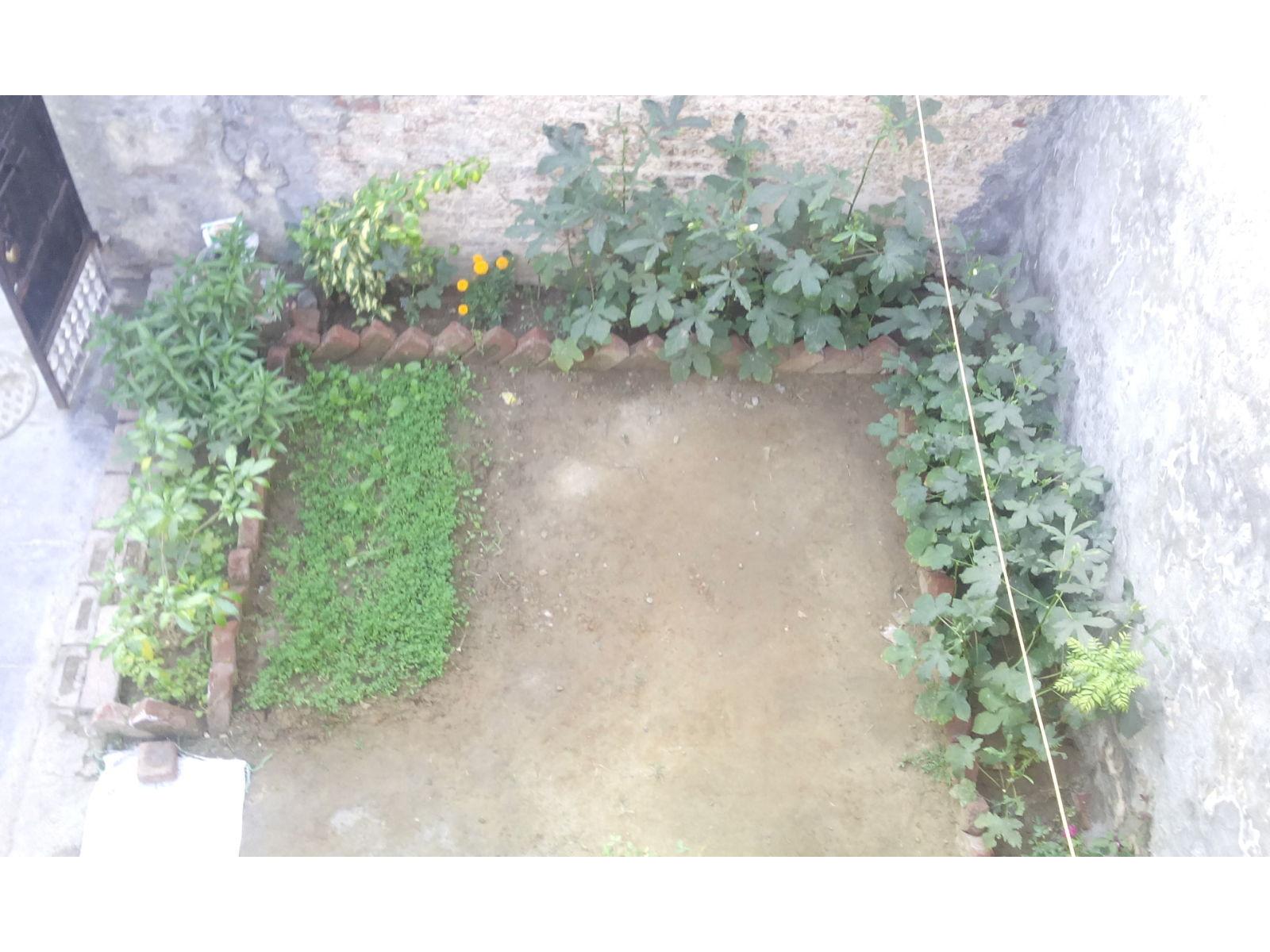 village-house-garden_0