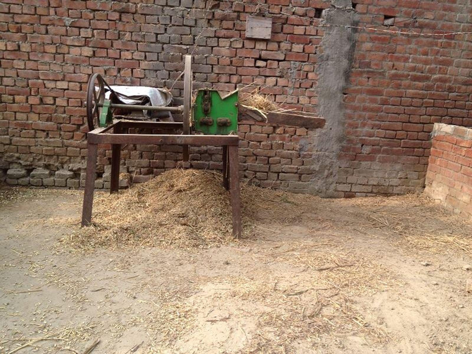 wheat-grinder